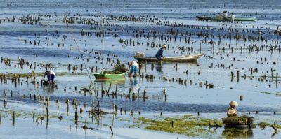 Joakim Leroy documentary - Indonesia