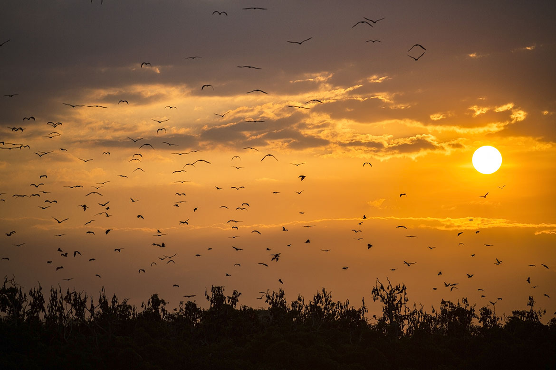Joakim Leroy Travel Photography - Komodo
