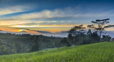 Joakim Leroy - Exhibition Bali