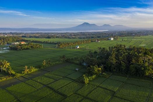 Bali-drone-Kedungu04